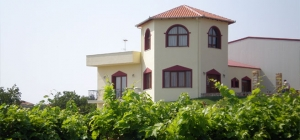 Wine Roads, Alexandros Hotel, Drama, hotels, rooms, apartments, accommodation, vacations, Drama, Greece